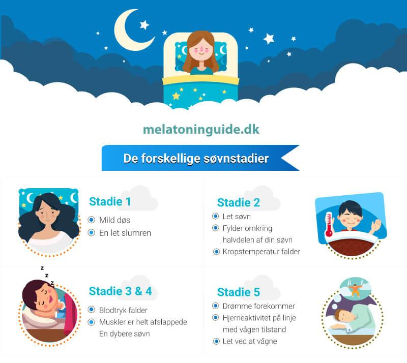 Infografik om søvnstadier